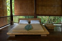 Bamboo Beds