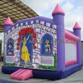 T5-445 inflatable castles