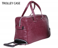2013 Newest designed style 4 wheels suitcase PU Trolley-BL2-1