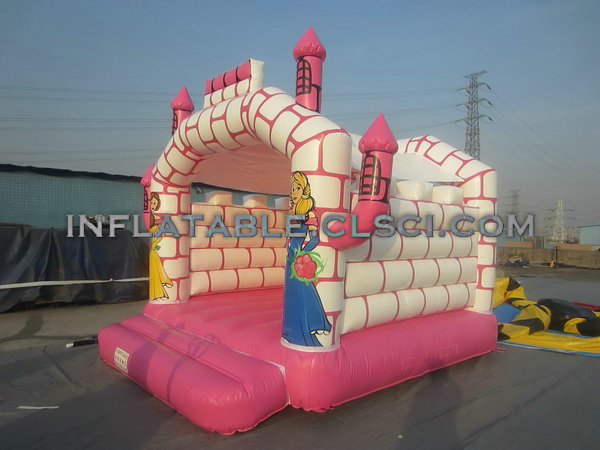 T5-261 Inflatable Castles