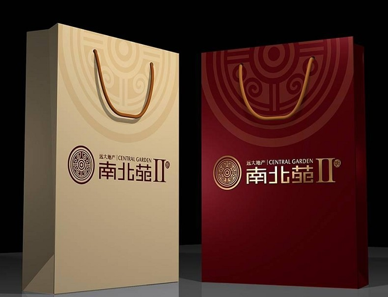 High quality art paper bag with cotton handle printing CNP7-10